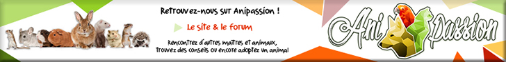 anipassion.com