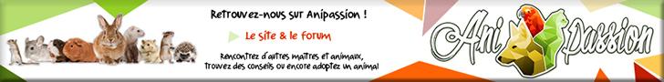 anipassion.com